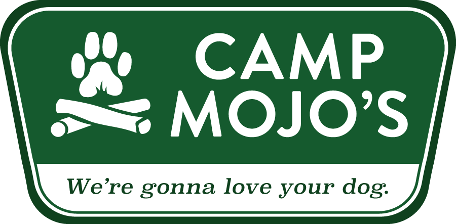 Camp Mojo's: Just another WordPress site